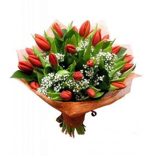 Букет из 25-ти ярких тюльпанов высшего сорта с гипсофилой в сетке