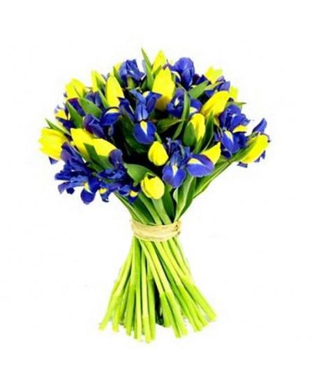 Букет из 15 желтых тюльпанов и 14 синих ирисов
