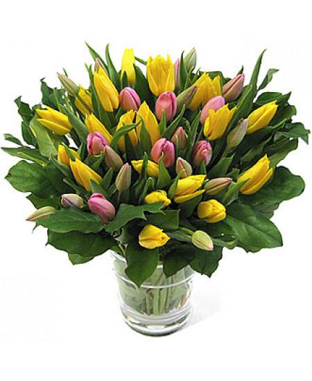 Букет из 39-ти тюльпанов двух цветов высшего сорта с зеленью