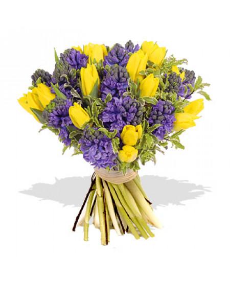 Букет из 15 желтых тюльпанов и 9 серенивых гиацинтов