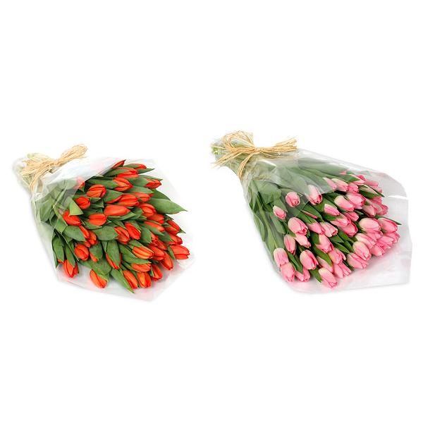 15 тюльпанов любого цвета, высшего сорта